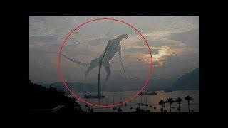 הסרטון המסתורי ששיגע את העולם!!!!!!! (אתם לא תאמינו כשתראו את זה זה נורמלי)!!!!!!