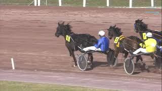 Vidéo de la course PMU PRIX NEIGE