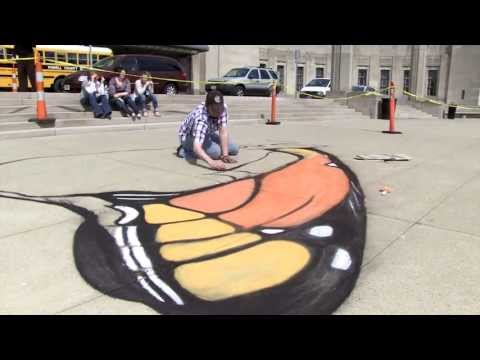 Monarch butterfly chalk art time lapse video at Cincinnati Museum Center