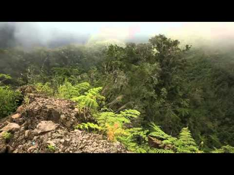 STORY OF FLORES, KOMODO AND WAEREBO