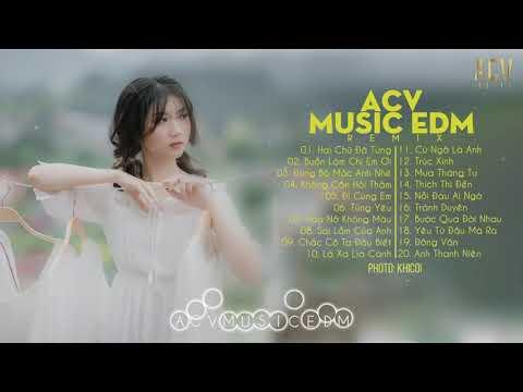Hai Chữ Đã Từng, Không Cần Hỏi Thăm - EDM Tik Tok ACV Remix Gây Nghiện - Nhạc Trẻ Remix 2020