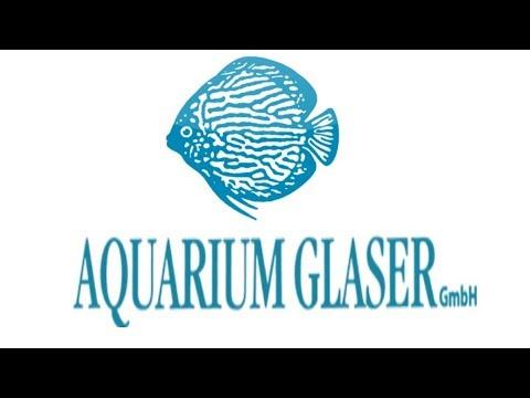 Крупнейший поставщик аквариумных рыбок в мире Aquarium Glaser GmbH. Ч1. Германия