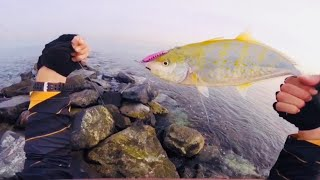 Shore Jigging catch and released/ King Fish #6 2018