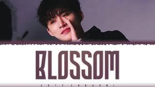 Download B.I (비아이) – 'BLOSSOM' (내걱정) Lyrics [Color Coded_Han_Rom_Eng]