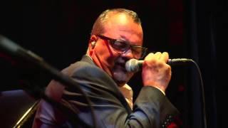 JazzBaltica: Jeff Cascaro