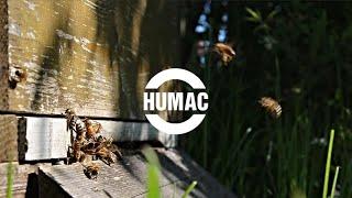 HUMAC & VČELY