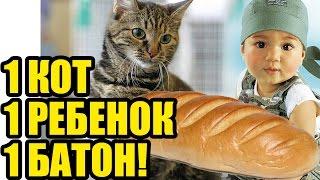 МАЛЫШ и КОТ ЕДЯТ БАТОН. Смешные коты и дети кушают! Маленький ребенок против кота)))