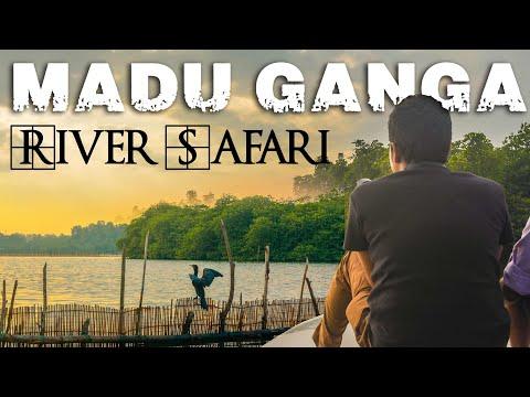 Madu Ganga - River Safari