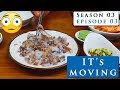 EATING LIVE OCTOPUS in the biggest fish market of South Korea |  Model Lifestyle s03e03