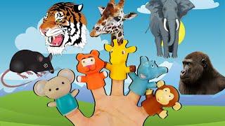 지환이와 아빠가 노래를 부르면 동물들이 움직여요!! When you sing, the animals move!!