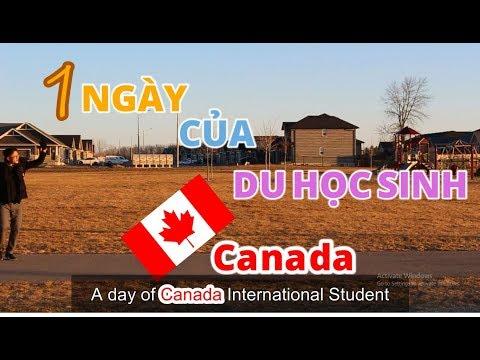 1 NGÀY CỦA DU HỌC SINH CANADA ( A DAY OF CANADA INTERNATIONAL STUDENT *ENGSUB*)