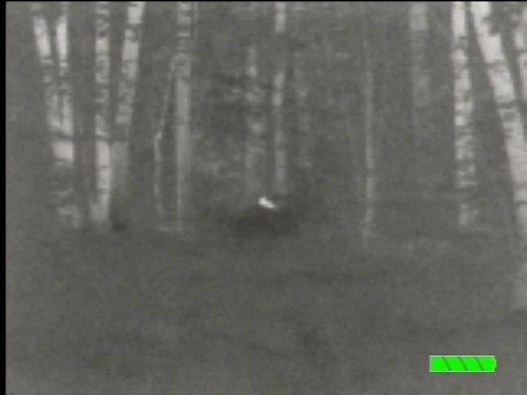 The First Ever Thermal Image Of Bigfoot Recorded By Bfro.