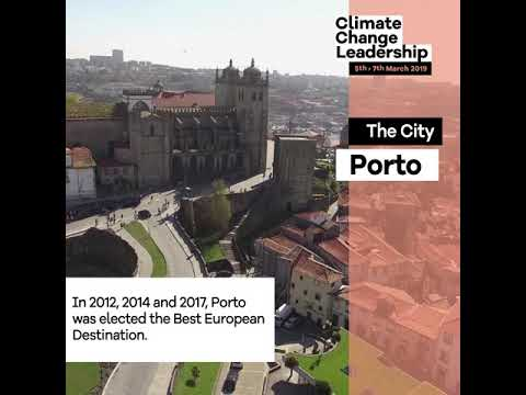 wine article About The City Of Porto