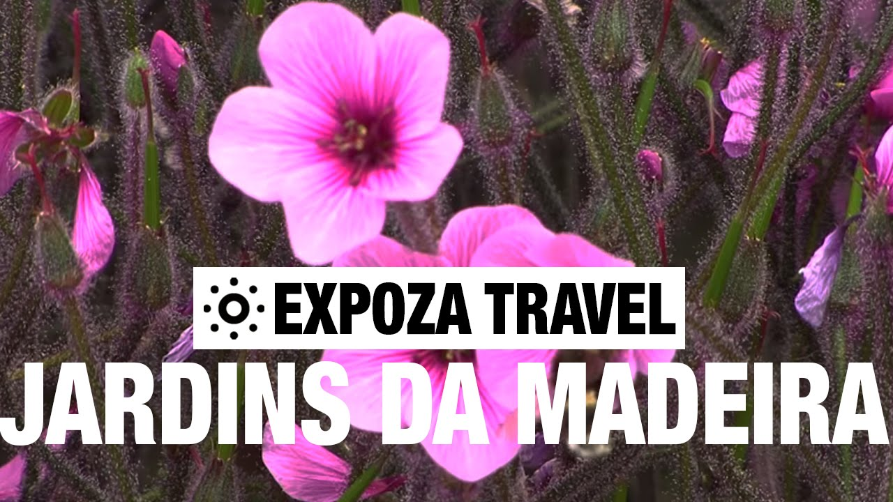 Jardins da Madeira (Portugal) Vacation Travel Video Guide