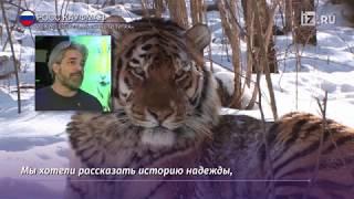 Предпремьерный показ фильма «Спасти тигра» прошел в Москве