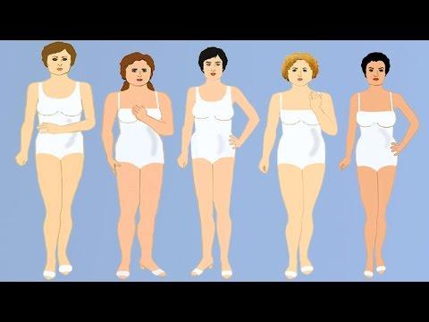 Тип телосложения человека, особенности питания и режим