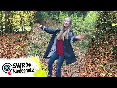 Juhu, Herbst! Das Schönste am Herbst   Tiere bis unters Dach   SWR Kindernetz