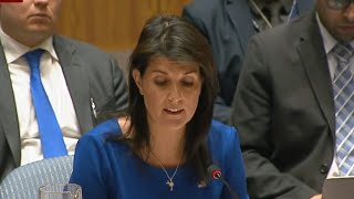U.N. Security Council meets on Syria
