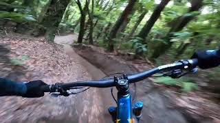 Vaea Verbeeck GoPro POV -  Native Forest Riding in Rotorua