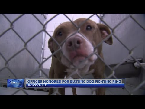 Jacksonville detective honored for his work to save dogs from dog fighting ring