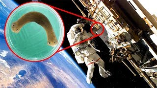 Most INCREDIBLE Space Experiments Ever Done!