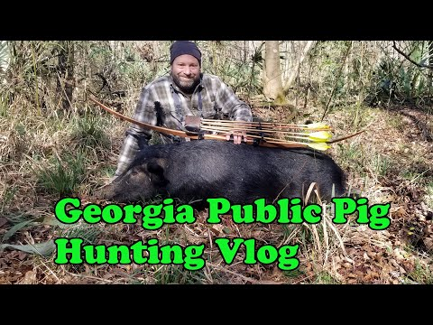 South Georgia Public Land Hog Hunting Vlog 2020