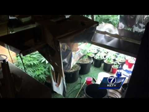 Omaha grow house busted Tuesday
