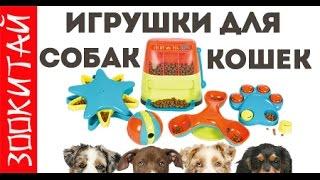 Игрушки для животных из Китая. игра для собак и кошек. ЗооКитай