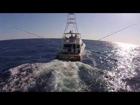 Release Marine on the Trust Fun 5 7 14