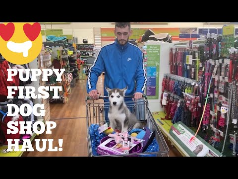 Taking My Puppy Shopping For The First Time Ever!! [SHE WAS SO HAPPY!!]
