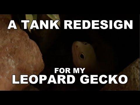 Leopard Gecko Tank Redesign - 20 Gallon Long