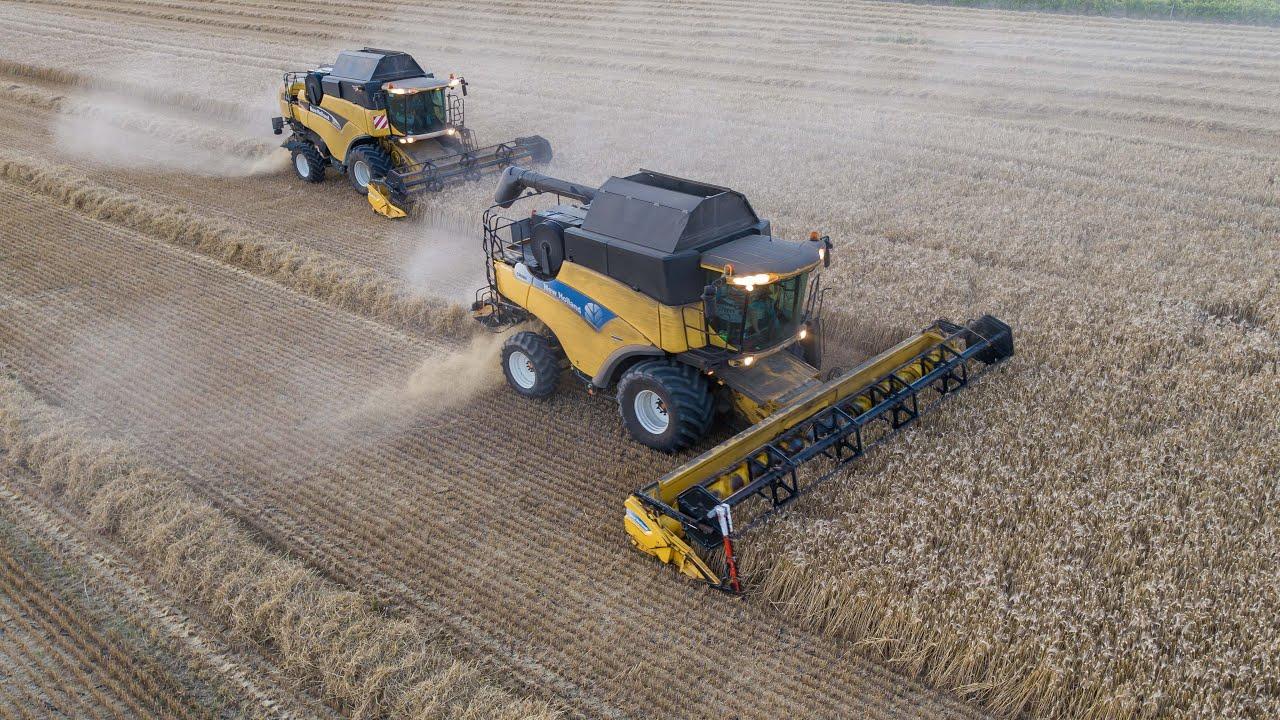 New Holland CR980 et CX820 à la moisson du blé dur