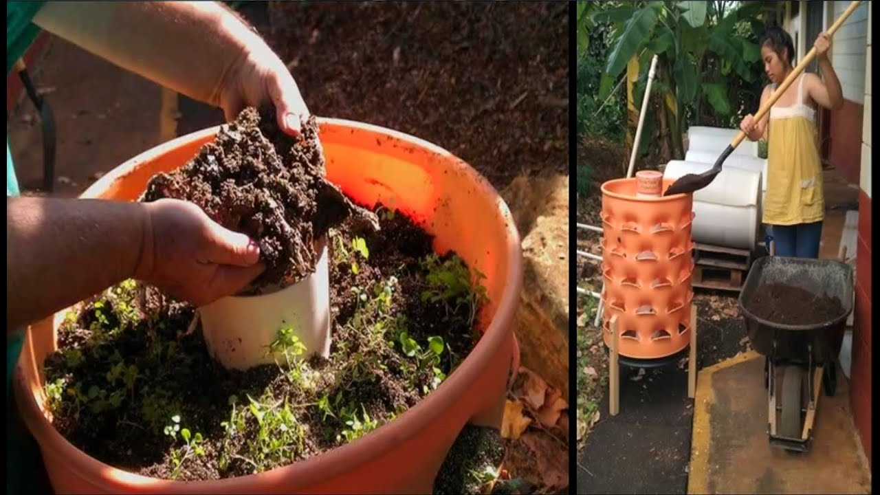 Integrating Aquaponics With Garden Towers For Local Food Production: A  Kahuku School Project   YouTube