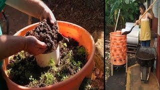 Integrating Aquaponics with Garden Towers for Local Food Production: A Kahuku School Project