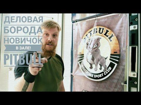 Деловая Борода представляет: НОВИЧОК В ЗАЛЕ PITBULL. Рекомендую к посещению.