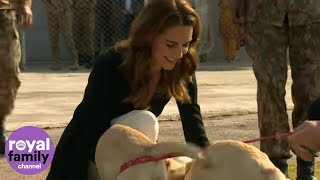 Duke and Duchess of Cambridge Play With Puppies in Pakistan