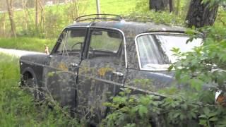 Fiat 1100 in totale degrado e abbandono, per gli amici di TELETRASH !!!