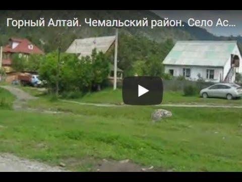 Горный Алтай. Чемальский район. Село Аскат