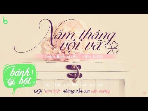 [Vietsub + Pinyin] Năm Tháng Vội Vã | 匆匆那年 - Vương Phi