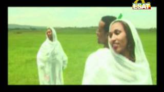 EM62 Tibebu Workiye   ethiopia Ethiopian Music