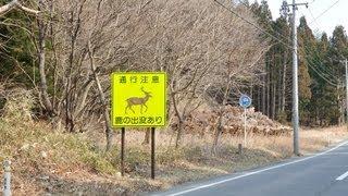 【岩手県道】209号崎浜港線