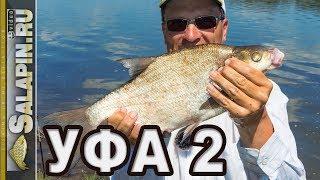 Рыбалка фидером на реке Белая, день второй [salapinru]