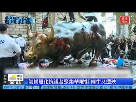 紐約新聞 10/07/19-M15巴士線路執法攝像今啟用/華爾街銅牛又遭殃