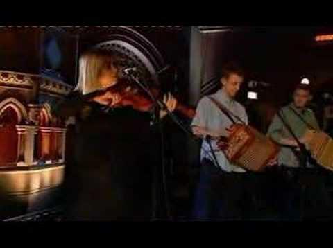 Martin Carthy & Dave Swarbrick - Life And Limb
