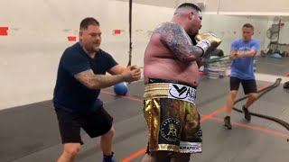 Andy Ruiz Jnr Weight Loss