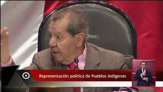 Representación política de Pueblos Indígenas