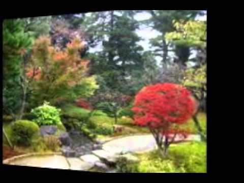 Koto Song - Dave Brubeck Quartet.wmv