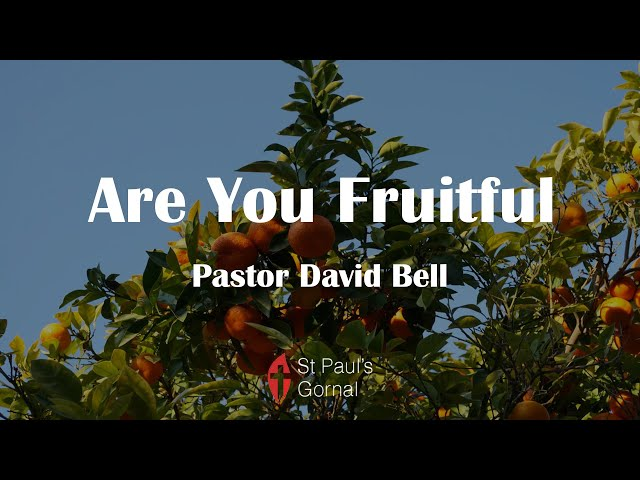 Are You Fruitful - Pastor David Bell