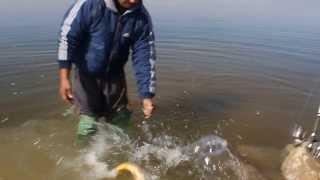 Арыс рыбалка 1