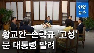 청와대 만찬서 선거법 놓고 황교안-손학규